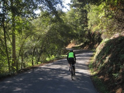 October: Gazos Creek Road is shady